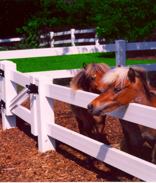 Two Rail (PVC) Vinyl Ranch Rail / mini ponies